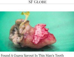 dente-germoglio_30154629
